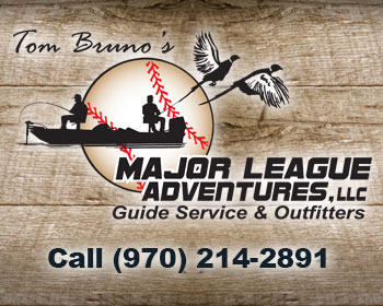 Major League Adventures