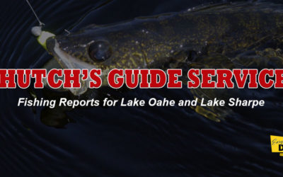 FISHING REPORT LAKES OAHE/SHARPE PIERRE AREA FOR AUGUST 18TH THRU 28TH 2019