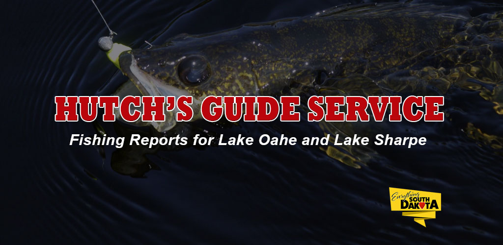 FISHING REPORT LAKES OAHE/SHARPE PIERRE AREA FOR SEPT 23RD THRU OCTOBER 7TH 2019