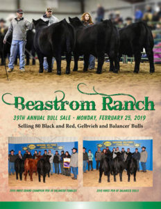 Beastrom Ranch Bull Sale