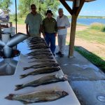 FISHING REPORTS LAKES OAHE/SHARPE PIERRE AREA FOR JULY 14TH THRU JULY 29TH 2019