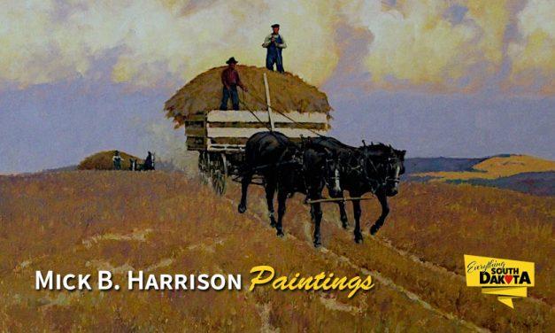 Artist Mick B. Harrrison