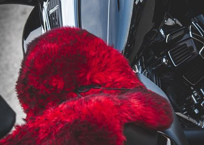 red-fur-harley
