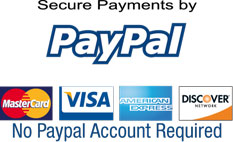 Secure Credit Card Processing by PayPal