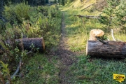 little-spearfish-trail-img8_1