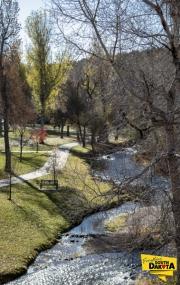 park-path-stream