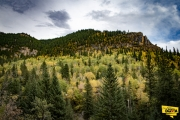 spearfish-canyon-fall