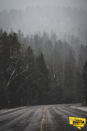 spearfish-canyon-road-shot