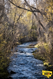 spearfish-creek