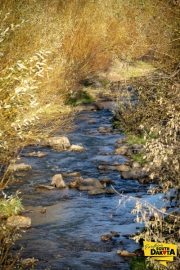 whitewood-creek-deadwood