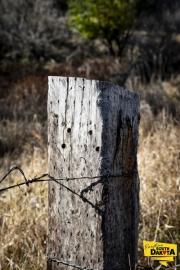 wood-post