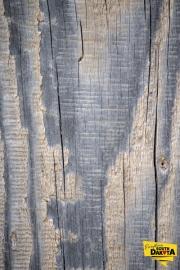 wood-grain-img